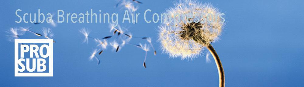 Scuba Breathing Air compressors